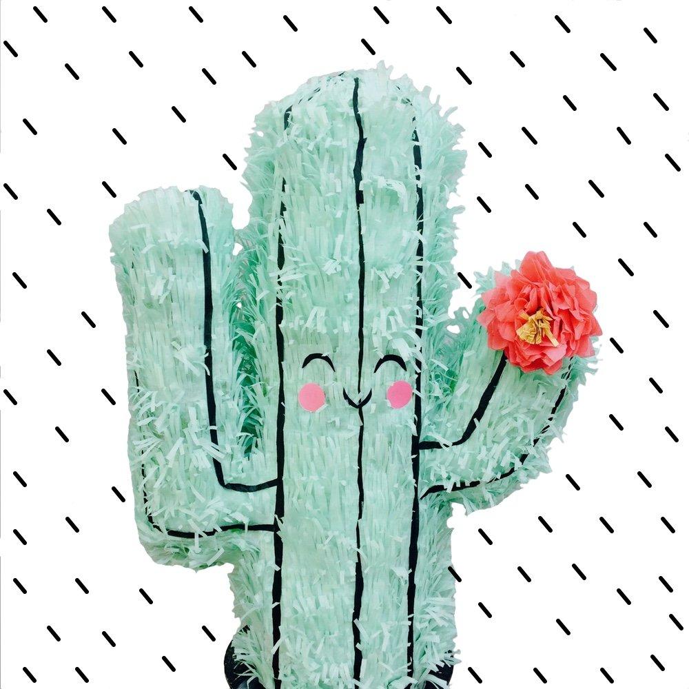 Whack Piñata - Cactus